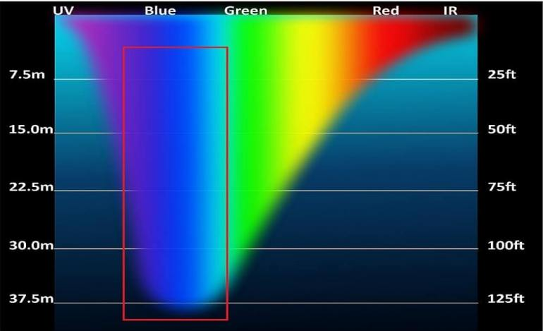 Visible spectrum of blue light