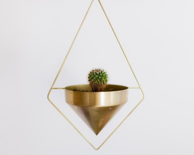 A small cactus sitting in a gold planter suspended from the ceiling.