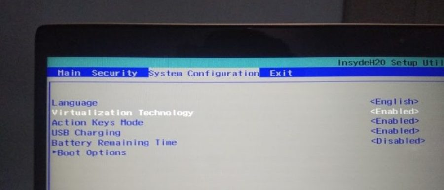 How to Enable Intel VT-x & AMD-V in Computer BIOS or UEFI