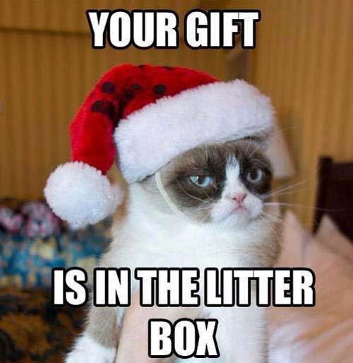 Merry Grumpy Christmas!