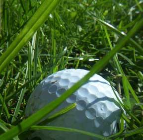 grass-golfball