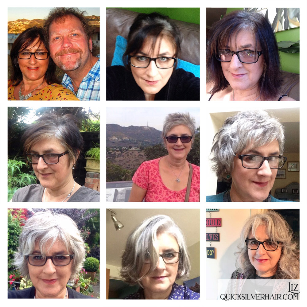 Collage pictures of Transition To Gray Hair Liz