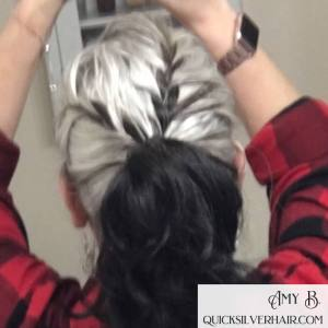 Image of French Braid into Pony Tail