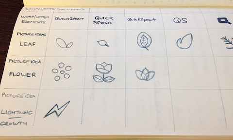 Morphological matrix of Quick Sprout ideas