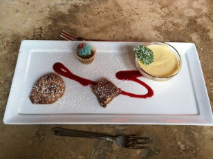 Mini dessert quartet: tiny cupcake, tiny custard, cookie, and cake