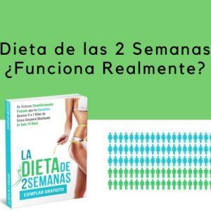 ¿Como Funciona Realmente la Dieta de las 2 Semanas?