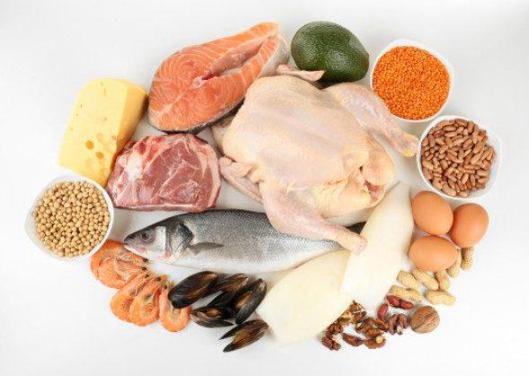 proteina para quemar mas calorias