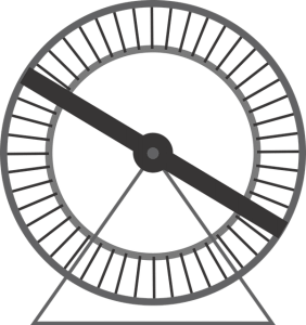 rueda de hanster