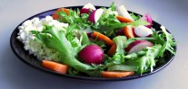 Quiet Corner Healthy Diet Why You Should Eat Sprouts