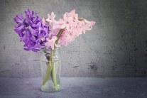 How to Keep Flowers Fresh Longer?