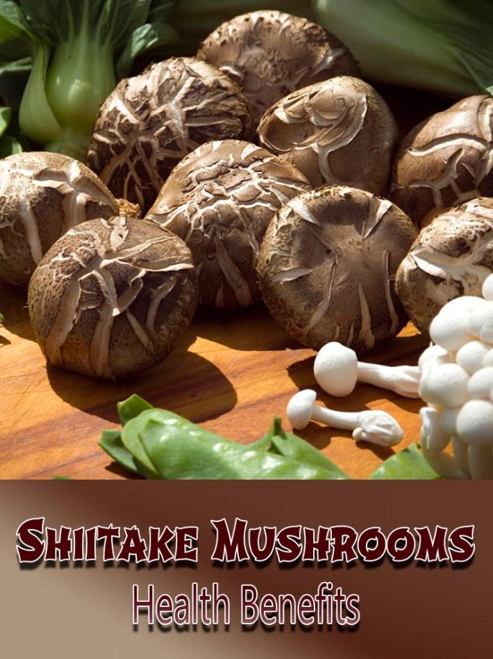Shiitake Mushrooms Health Benefits
