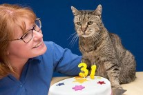 Nutmeg is the Oldest Living Cat in the World at 31