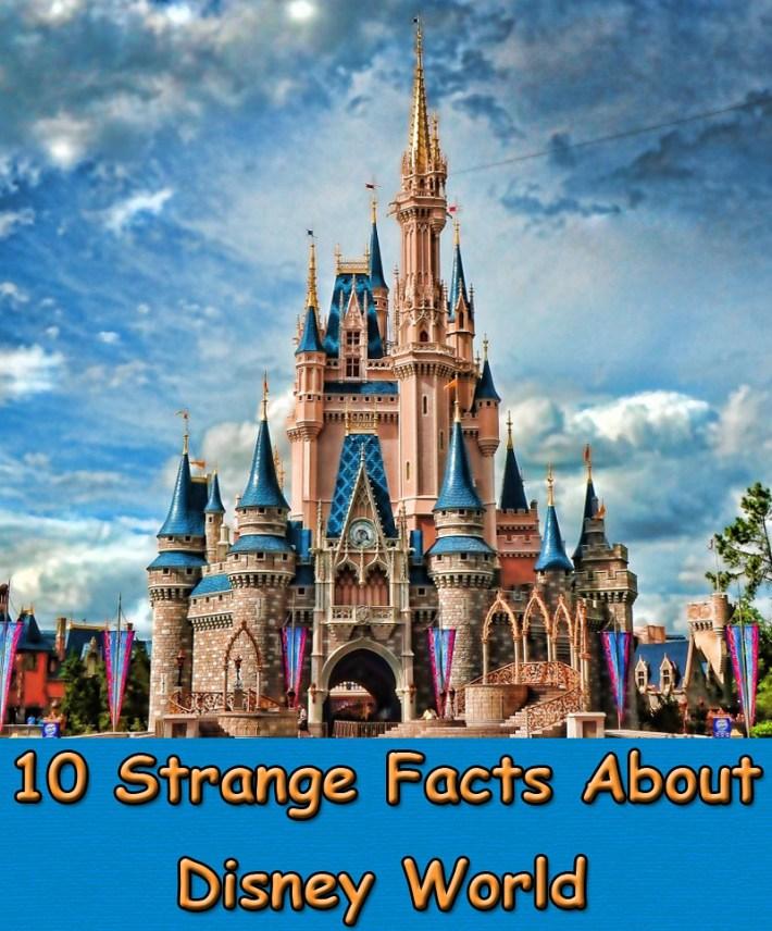 10 Strange Facts About Disney World