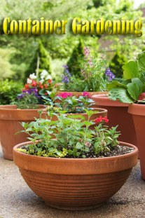 Container Gardening is Not so Limiting After All