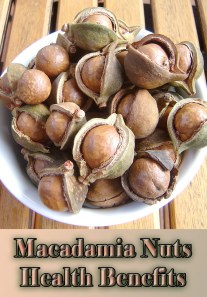 Macadamia Nuts Health Benefits and Nutrition Facts