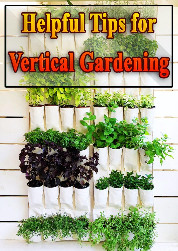 Helpful Tips for Vertical Gardening