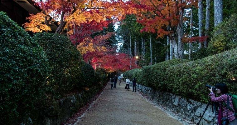 Osaka and Koyasan
