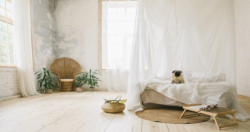 Soundproof Pet Room