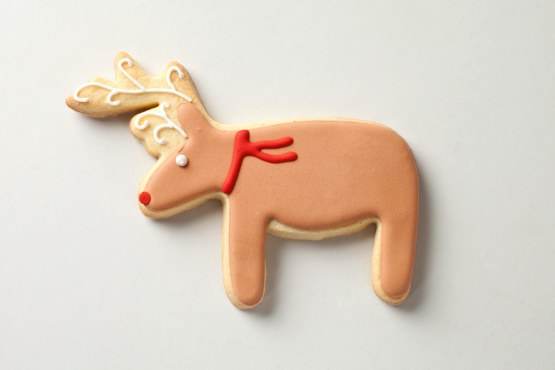 12 Reindeer Names