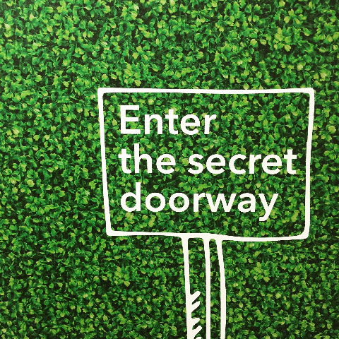 Enter the secret doorway