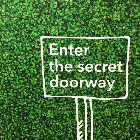 Enter the secret doorway