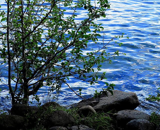 priest-lake-2-028