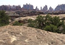 Canyonlands Needles District – July 2018