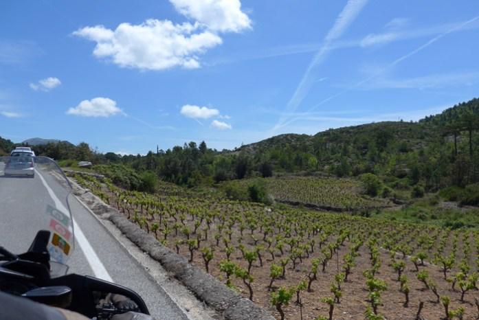 Península croata, região de cultivo de vinha