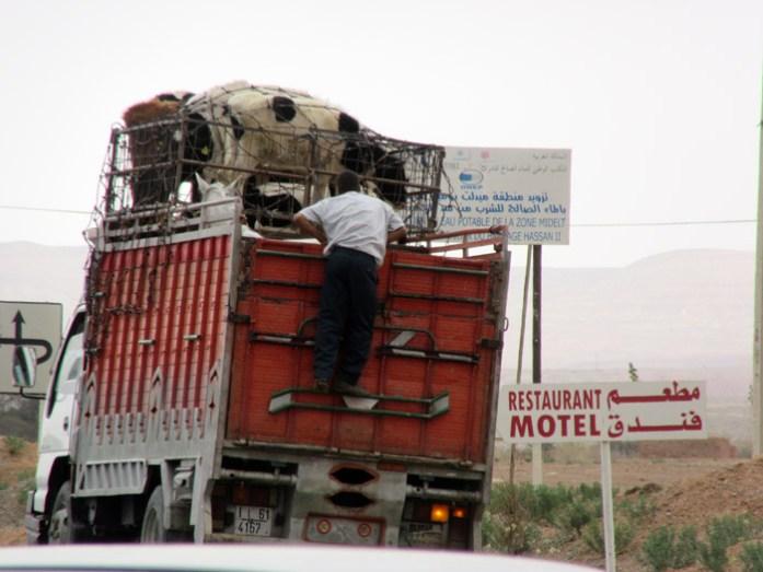 Informações para uma viagem de mota a Marrocos.