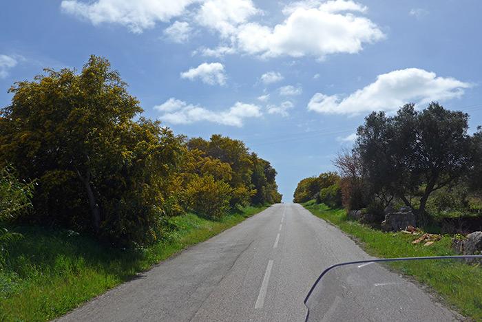 Estrada M537. Figueira
