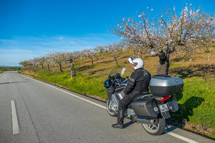 Rota das Amendoeiras em Flor: Cerejais