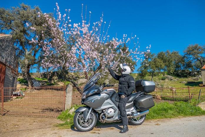 Castedo: Rota das Amendoeiras em Flor