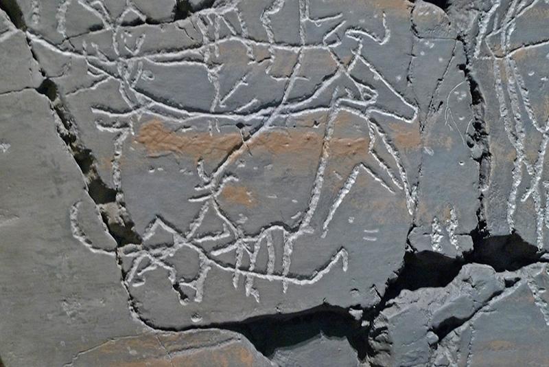 Parque Arqueológico do Côa
