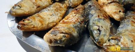Quatro festivais gastronómicos de verão a não perder