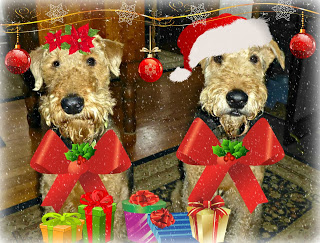 http://northfordmaggie.blogspot.co.uk