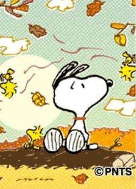 e63028e75af0abb268f403a14f3e4ee3--autumn-fall-autumn-leaves