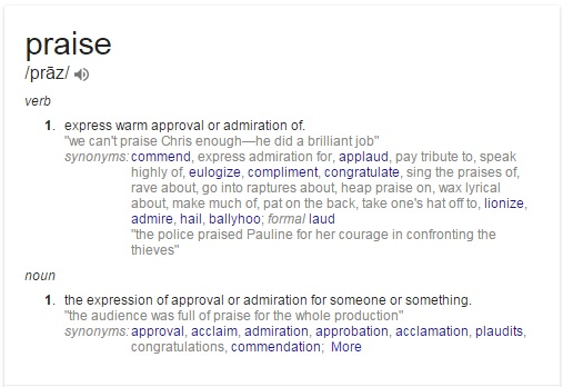 definition for praise