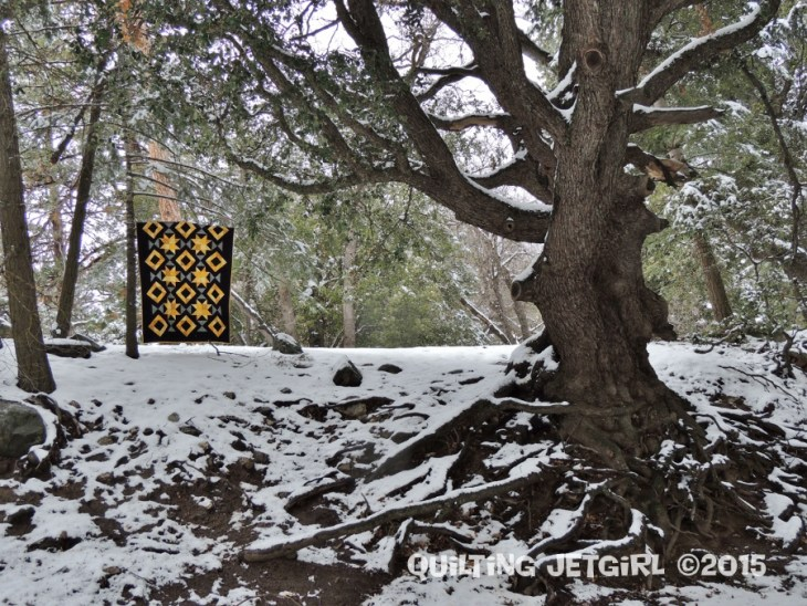 Foothills Mystery Quilt