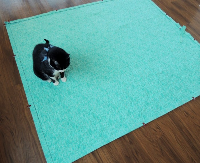 Puppy the Cat: Quilt Inspector