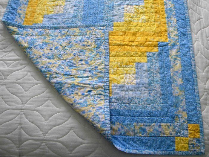 Dare Baby Quilt