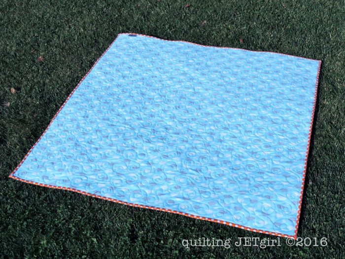 Ready, Set, Fly Baby Quilt - Flannel Backing