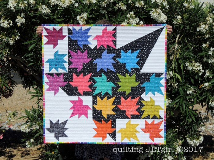 Freefall QAL - My Finished Freefall Quilt!