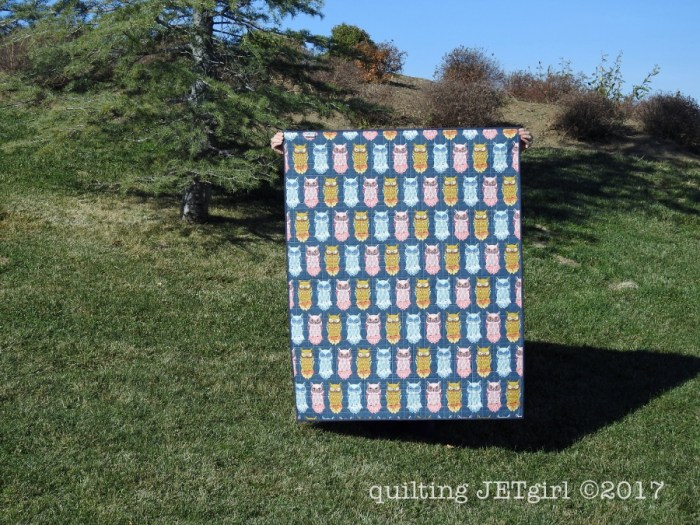 Quilt for Zoe - Backing