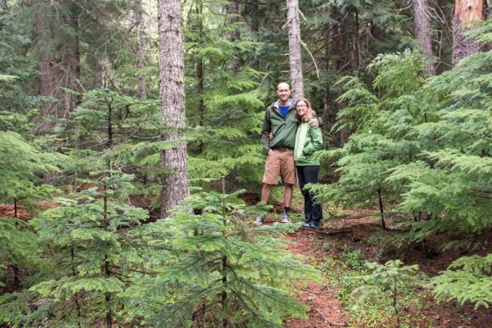 Green Forest Near Mount Hood