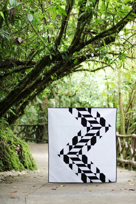 Tire Tracks - photograph taken by Kitty Wilkin @nightquilter in Costa Rica