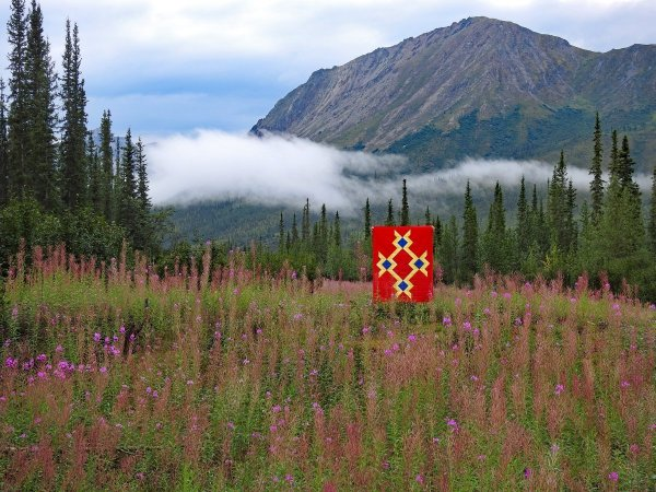Baby Wonder in Wonder Woman Colors – Brooks Range, Alaska