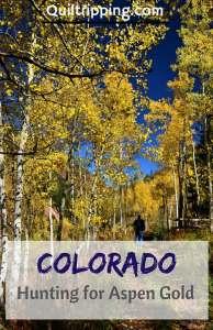 25 photos to inspire a search for golden aspens in Colorado #colorado #goldaspens #autumn #autumnincolorado