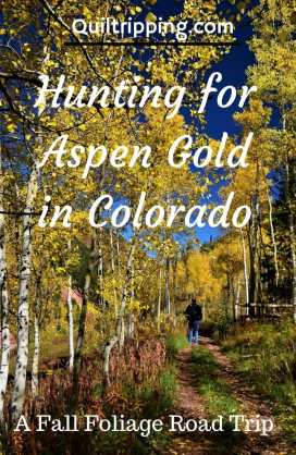 Hunting for Aspen gold in CO