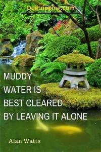 Muddy wter is best cleared by leaving it alone #quote @inspirationalquote #portlandjapanesegarden