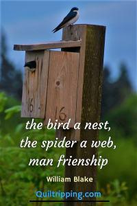 The bird a nest, the spider a web, man friendship - William Blake